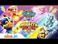 Meet the Mighty Pups Ft. Chase, Rubble, Skye & More!  🐾 PAW Patrol Nick Jr.