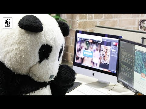 Hacking our way to a sustainable future | WWF-Australia
