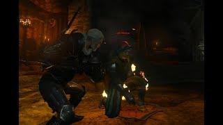 Líder dos Bandidos - The Witcher III #167