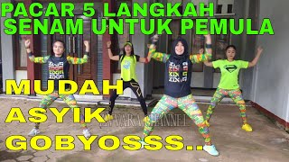 Download Lagu Senam dirumah sendiri aerobik dangdut pemula musiknya mantul mp3