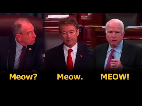 Rand Paul Causes A Vicious Senate Cat Fight Over Patriot Act