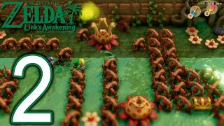 The Legend Of Zelda Link's Awakening Switch Walkthrough - Part 2 -