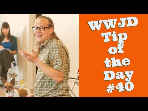 What Would Jeff Do? Dog Training Tip of the Day #40 Feeding dogs