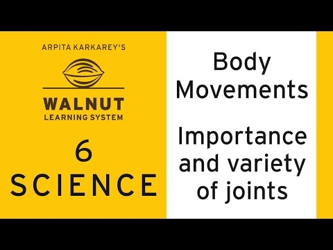6 Science - Body movements - Importance and  variety of joints