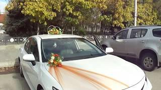 Свадебный кортеж Волгоград и область - аренда авто, прокат свадебных украшений для машин