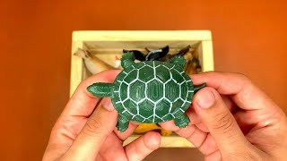Learn Names Sea Animals for Baby Kids with Wild Zoo Tortoise Toy Video