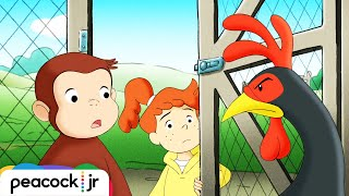 George And Allie's Egg-cellent Adventure! 🐵curious George 🐵 Kids Cartoon 🐵videos For Kids