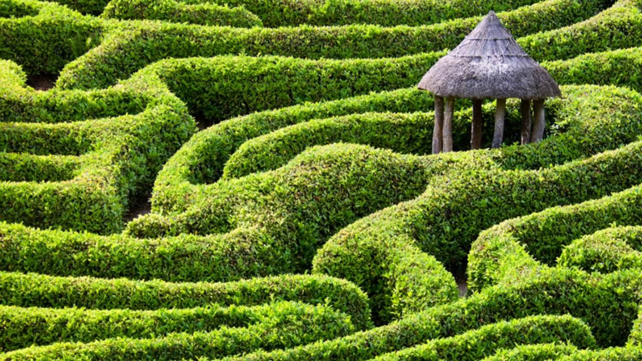 Longleat Hedge Maze Interesting Challenge For Tourists Youtube