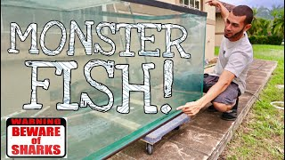 Monster FISH Tank *DIY*