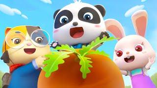 にんじんをぬこう | 赤ちゃんが喜ぶ歌 | 子供の歌 | 童謡 | アニメ | 動画 | BabyBus