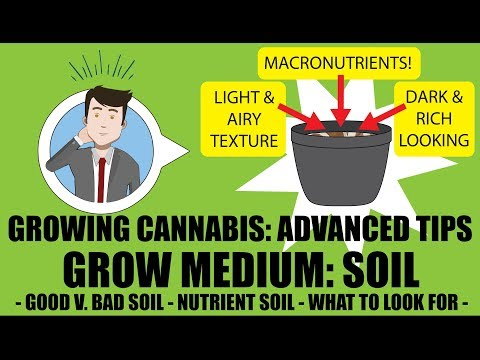 Grow Medium - SOIL (PART 1): Advanced Cannabis Growing Tips  - GROWING CANNABIS 201