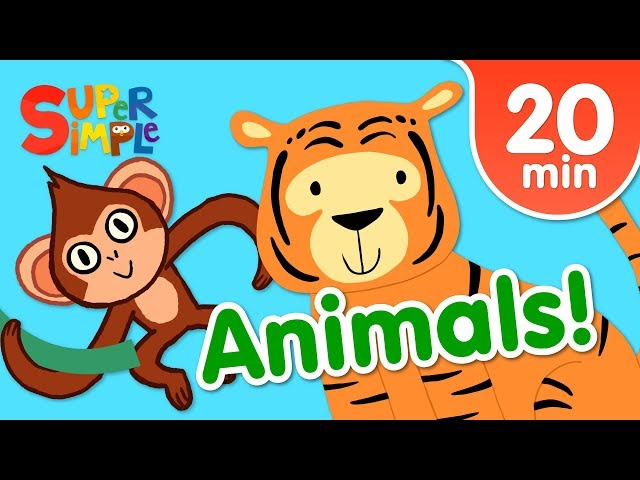 Our Favorite Animals Songs For Kids