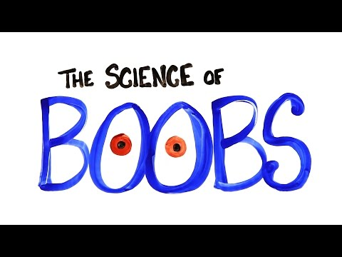 The Science of Boobs