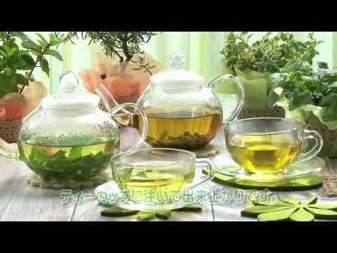 フレッシュ&ドライハーブティー ~Herb Tea~