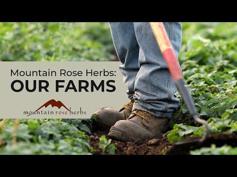 Mountain Rose Herbs: Our Farms