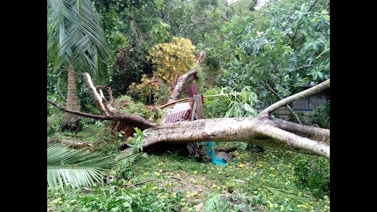 Malakula hit by Tropical cyclone Hola , vanuatu hit by cyclone Hola