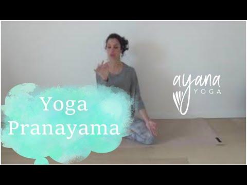 13 Yoga Pranayama Nadi Shodana Respiration Alternee Purification Nadis Cecile Ayanayoga Youtube