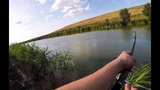 Рыбалка в Ставропольском крае. Река Егорлык. Июль 2019