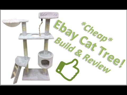 Cheap Cat Tree Review - Great for For Ferrets too!