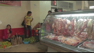 Wild meat and food security