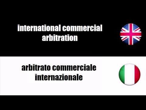 ENGLISH ITALIAN   commercial arbitration