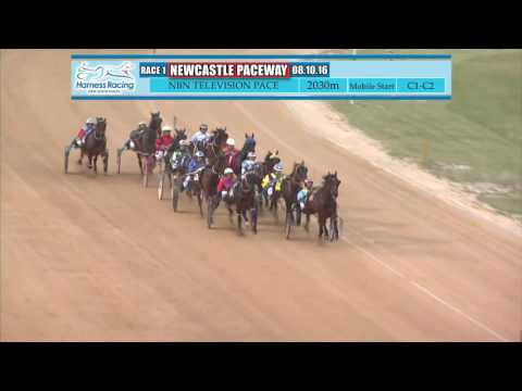 NEWCASTLE - 08/10/2016 - Race 1 - NBN TELEVISION PACE