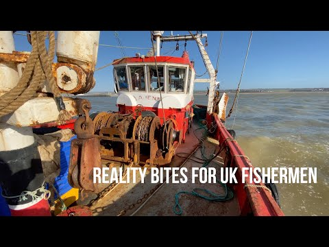 Reality Bites For The UK Fishing Industry
