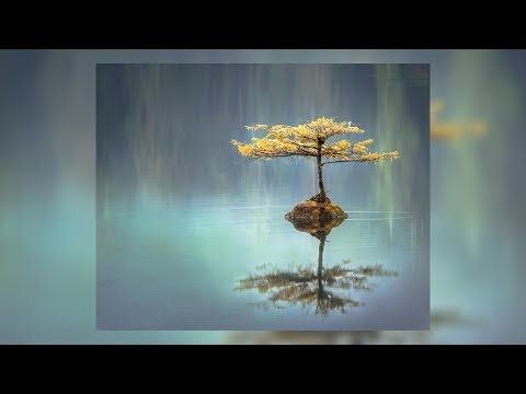 30+ Min Relaxing Ambient Music: Calming Music, Sleeping Music, Anxiety Relief, Breathing Music