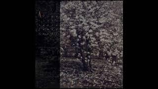 Baixar Alice - Melodie passagère (Alice canta Santie,Fauré,Ravel)[Full album](1988)