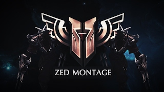 Shadow Brothers Zed Montage # 2 (Majki The General & IAmCruical)