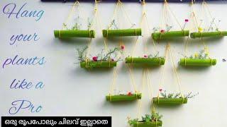 Be A Pro In Gardening  എളുപ്പം ചെയ്യാവുന്ന ഒരു Hanging Garden