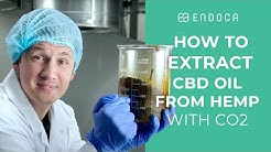 How To Extract CBD Oil From Hemp With CO2 #cbdonline | Endoca ©