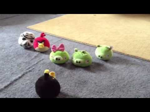 Angry birds pig gets married image