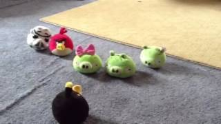 Angry birds pig gets married