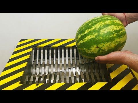 EXPERIMENT Shredding WATERMELON