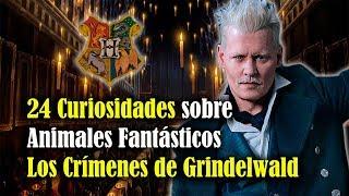 24 Curiosidades sobre Fantastic Beasts The Crimes of Grindelwald que han salido a la luz