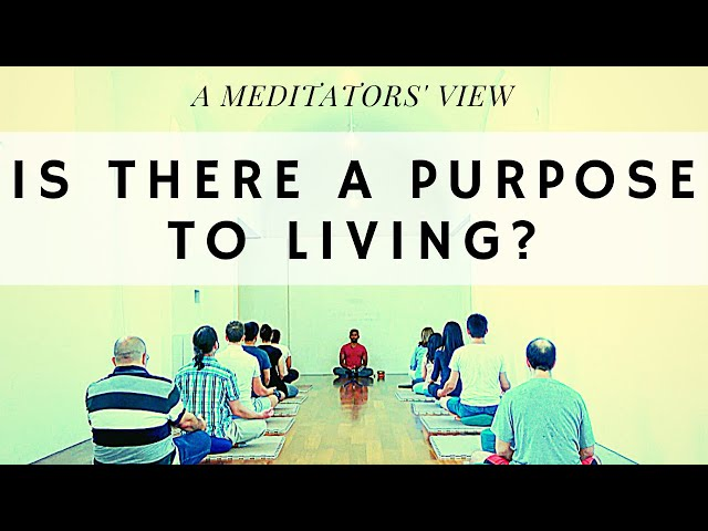 Is there a purpose to living? - A MEDITATIORS' View
