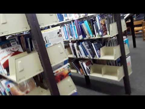 Gangstalker yelled at me in library