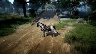 Black Desert Online Horse Skill Training