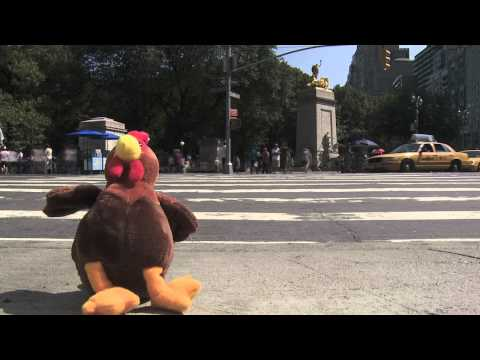 Tough Turkey in the Big City - CMS Meet the Music!