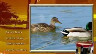 El Pato y la Pata - Climaco Sarmiento