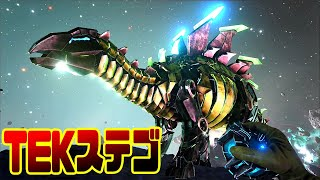 これが宇宙空間での必殺無重力テイムだ!! 超高Lvステゴサウルスをテイム!! …
