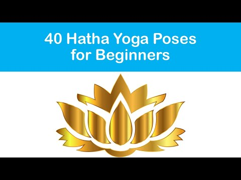 40 Hatha Yoga Poses for Beginners