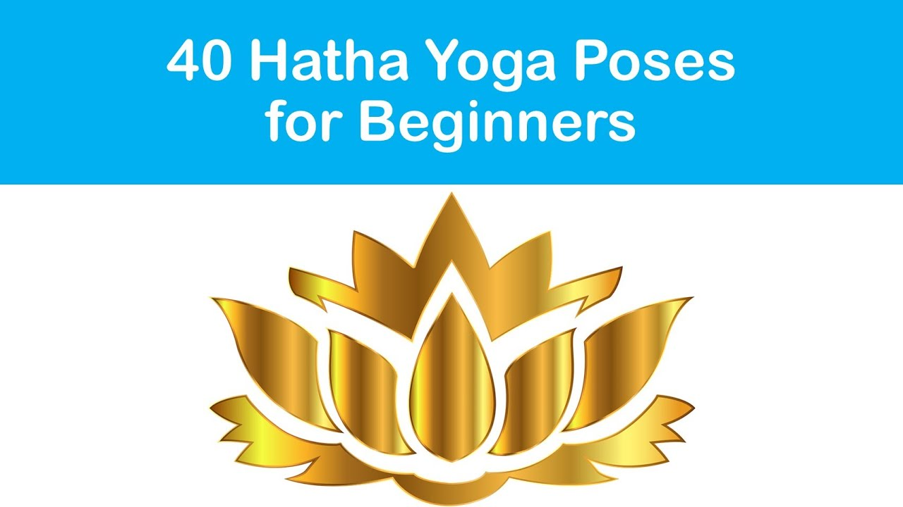 40 Hatha Yoga Poses For Beginners