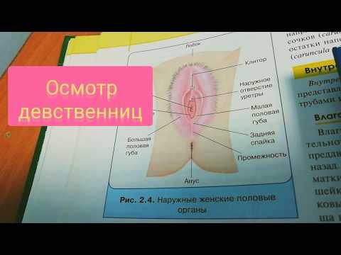 ГИНЕКОЛОГИЧЕСКИЙ ОСМОТР ДЕВСТВЕННИЦ