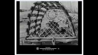 Repeat youtube video Port-Daniel et la pêche au homard 1939