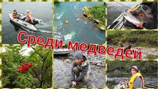Один день с медведями Сплав по реке Быстрая Рыбалка на Камчатке