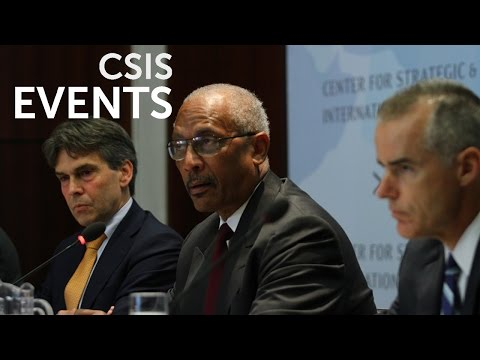 The Syrian Conflict's Foreign Fighters: Concerns at Home and Abroad_Panel1
