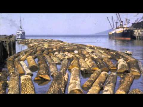 Video Project: BC Raw Log Exports