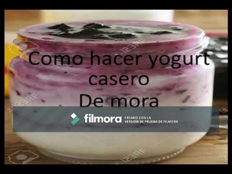 como hacer yogurt de mora